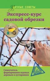 Экспресс-курс садовой обрезки - Окунева Ирина Борисовна