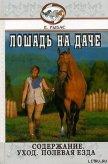 Лошадь на даче - Рыбас Екатерина Святославовна
