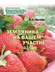 Земляника на вашем участке - Щекин Владимир Алексеевич