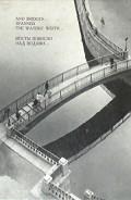Мосты повисли над водами... - Плюхин Евгений