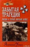 Забытая трагедия. Россия в первой мировой войне - Уткин Анатолий Иванович