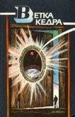 Ветка кедра - Костман Олег