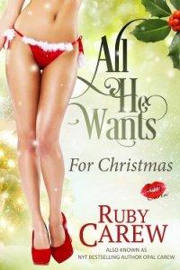 Его желания в Рождество (ЛП) - Карью Руби